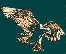 White Mountain Audubon Society